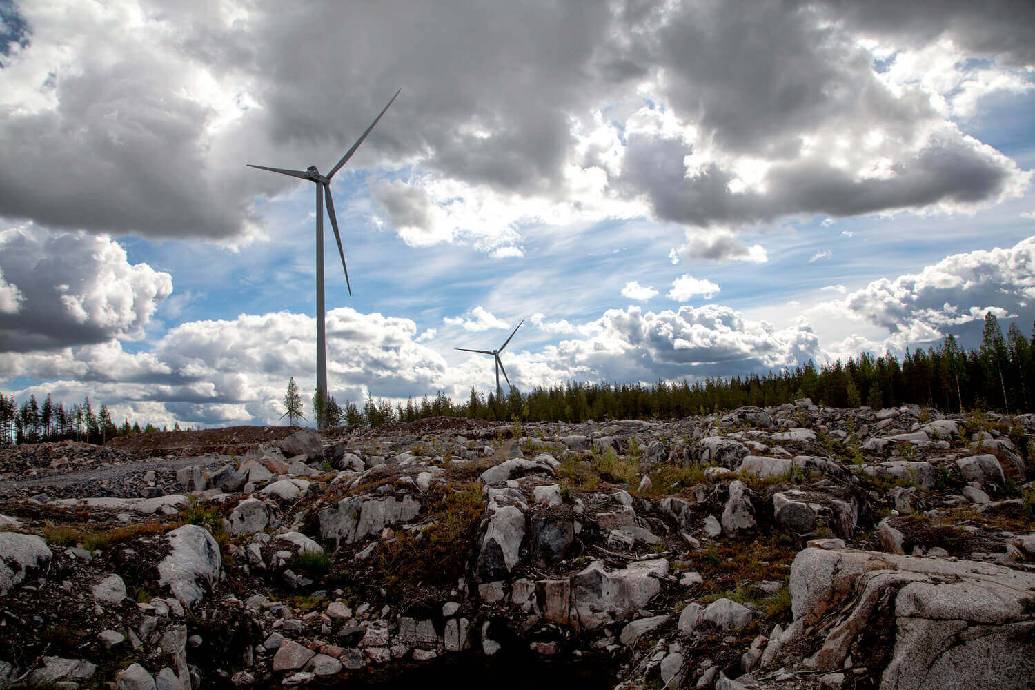 Vestas wins turbine order for subsidy-free wind farm in Finland